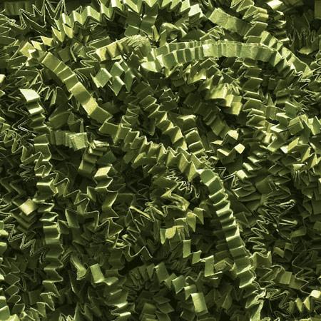shred-images/CSOliveLg.jpg